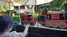Mini Train For Kids In Shoppin...