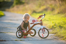 Cute Toddler Child, Boy, Playing With Tricycle In Park, Kid Riding Bike On Sunset