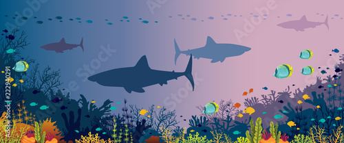 Photo Underwater panorama - sharks, fishes, coral reef and sea.