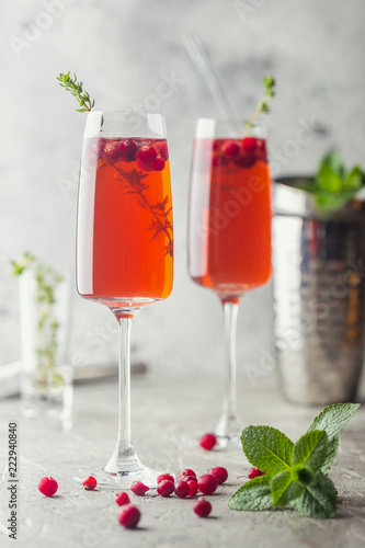 Colorful Red alcoholic cocktail