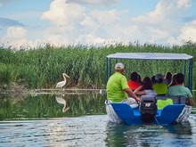 Tourists On A Boat In The Danube Delta, Romania