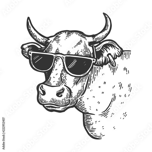 Cow animal in sunglasses engraving vector illustration. Scratch board style imitation. Black and white hand drawn image. Wall mural