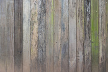 Old Wood Board With Green Moss For Texture And Background