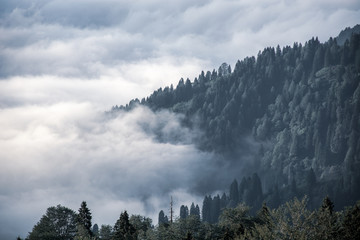 Obraz na SzkleAmazing aerial view of cold misty mountains.Cloud and forest landscape