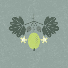 Ripe Gooseberry Illustration. Green Berry With Leaves And Flowers On Shabby Background. Flat Design. Original Simple Flat Illustration.