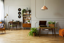Record Player And Plant On Wooden Table In Grey Apartment Interior With Lamp And Vinyl. Real Photo