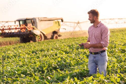 Fototapeta Young farmer in filed holding tablet in his hands and examining soybean corp. obraz