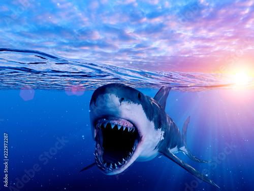Fotografie, Obraz  3d rendered illustration of a great white shark