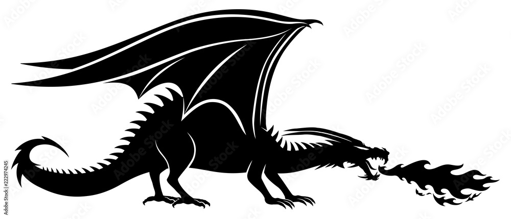 Fototapeta Sign of a black dragon on a white background.