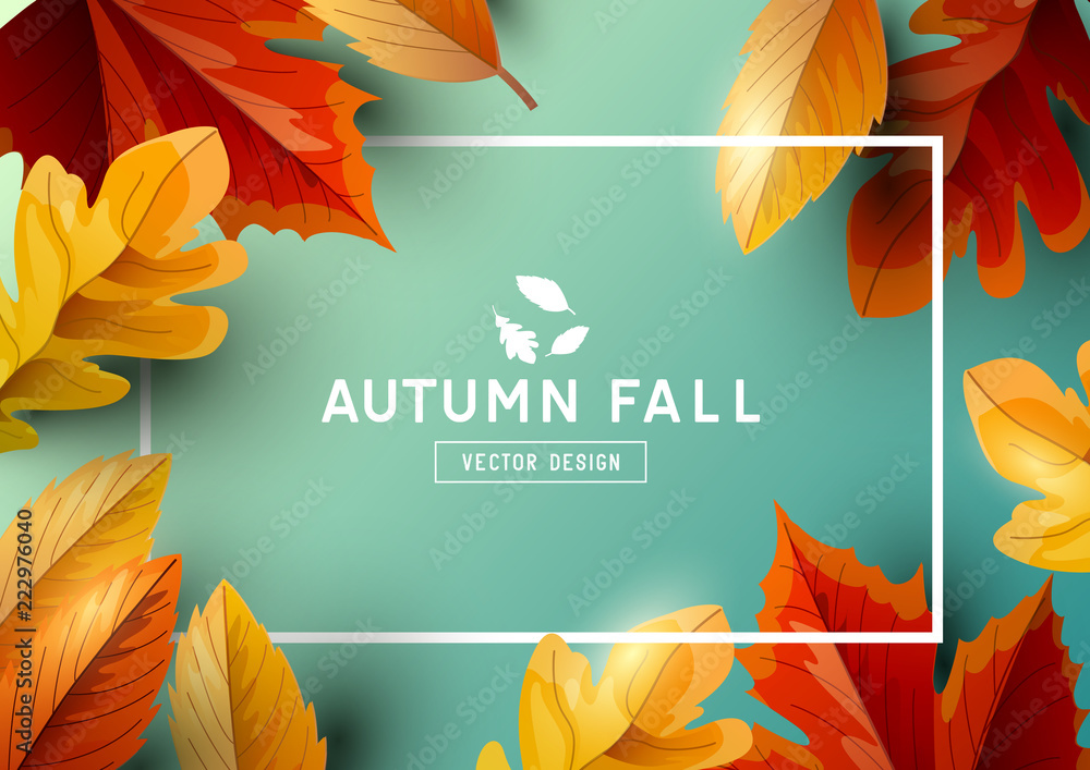 Fototapety, obrazy: Autumn Seasonal Frame Background Top View