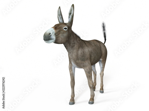 Canvas Print 3d rendered illustration of a donkey