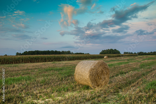 Foto op Canvas Platteland Hay bale in the field and evening colorful clouds
