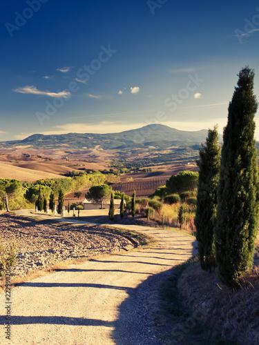 Foto op Aluminium Nachtblauw Hills of Tuscany, Italy