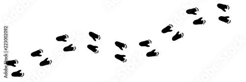 Fototapeta premium Ślad stopy wektor łapa wydrukować małpy. Ukośne gąsienice zwierzęce z sylwetką goryla na koszulki, tła, wzory, strony internetowe, projekty gablot, kartki z życzeniami, nadruki dziecięce itp. To pędzel.