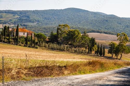 Von Zypressen Gesaumtes Haus In Der Toskana Buy This Stock Photo