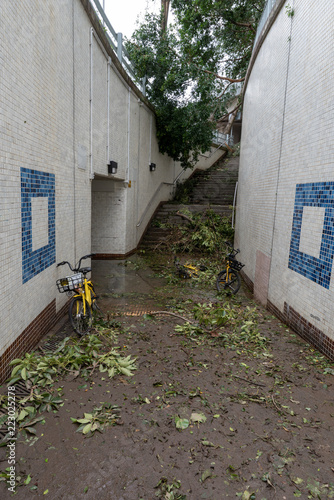Photo  Aftermatch of Super Typhoon Mangkhut