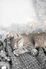 A Cute Kitten Is Resting On A Gray Plaid In Christmas Balls