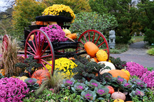 Wagon With Fall Flowers