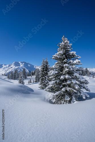 Foto op Aluminium Nachtblauw Winter in den Alpen
