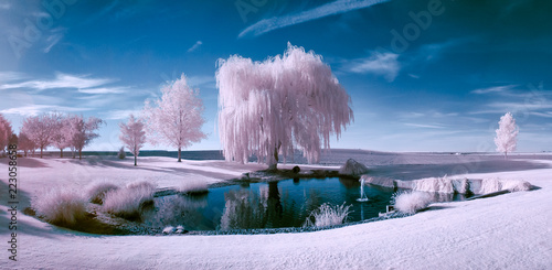 Infrared scene of a pond and trees Wallpaper Mural