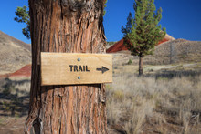 Trail Sign, John Day Fossil Be...