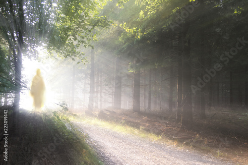 Cadres-photo bureau Route dans la forêt Jesus Christ walking after His resurrection. Figure in sun lights. Sunning shine in forest.