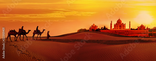 Camel caravan going through the desert.Taj Mahal during sunset
