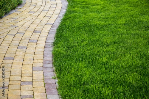 Fotografie, Obraz Sidewalk made from pavers running through a lawn