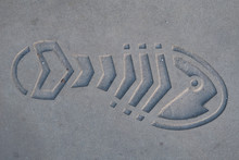 Shoe Imprint In Concrete