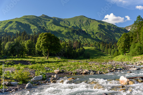 Fast mountain river in the mountains of Abkhazia, Georgia. Alpine meadows in the mountains