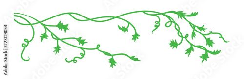 Fototapeta pumpkin vines leaves and curls in autumn or halloween border or corner design el