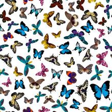 Colorful Print Pattern Seamles...