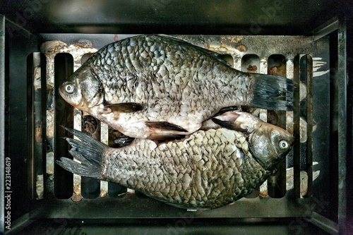 Fotografie, Obraz  freshwater fish carp-prepared for Smoking on the smoker