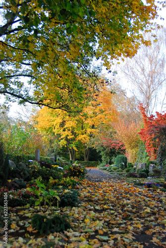 Keuken foto achterwand Begraafplaats Der bunte Herbst