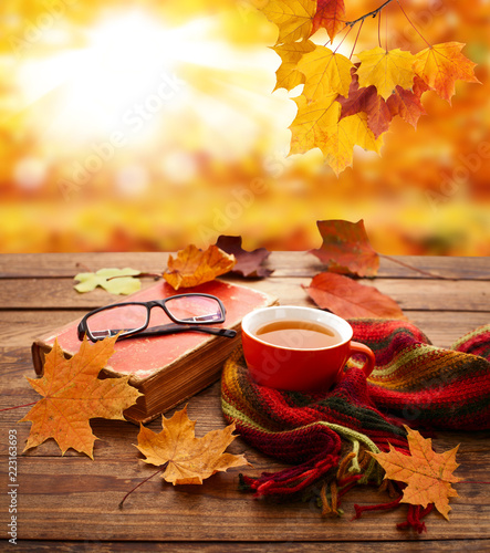 Autumn background. Autumn leaves, book and cup of tea on wooden table in park.