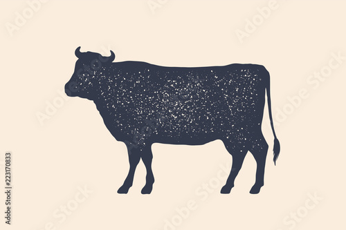 Tablou Canvas Beef, cow