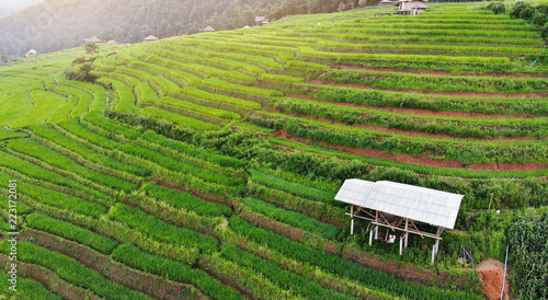 Poster Rijstvelden Aerial view from drone paddy terraces field with hut in Thailand.