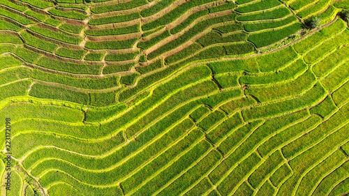 Aerial view from drone paddy terraces field in Thailand.