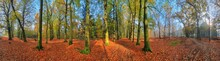 Beautiful 360 Degree Panorama ...
