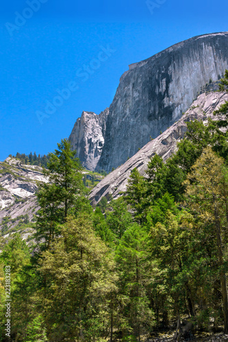 Photo  Granite rock wall with pine trees in Yosemite National Park