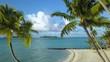 Bora Bora aerial footage from a drone of clear blue ocean coast, coconut palm trees on white sand beach at Bora Bora island, Tahiti, French Polynesia, South Pacific Ocean