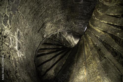 Fotografie, Obraz  escada do castelo perigosa