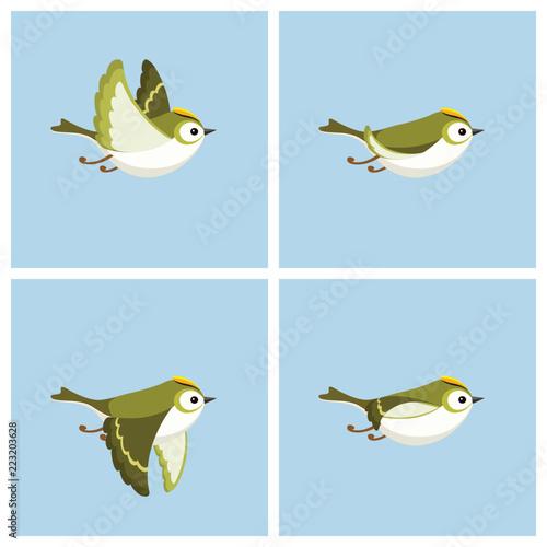 Flying Goldcrest (male) animation sprite sheet Canvas-taulu