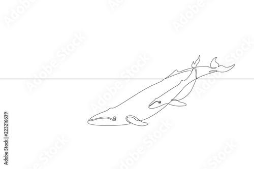 Fototapeta premium Pojedyncza linia ciągła sylwetka dziecka rodzica morskiego wieloryba Natura ocean ekologia koncepcja środowiska życia. Wielka opowieść zwierzęca fala morska projekt jeden szkic szkic, rysunek wektor ilustracja