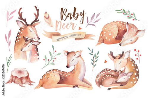 Fototapeta premium Cute baby akwarela jelenia zwierząt, ilustracja na białym tle przedszkola odzież dla dzieci, wzór. Obraz boho wykonany ręcznie z akwareli Idealny do projektowania etui na telefony, plakatów przedszkolnych, pocztówek