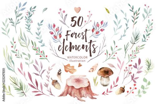 Naklejka premium Cute baby akwarela jelenia zwierząt, ilustracja na białym tle przedszkola odzież dla dzieci, wzór. Obraz boho z akwareli