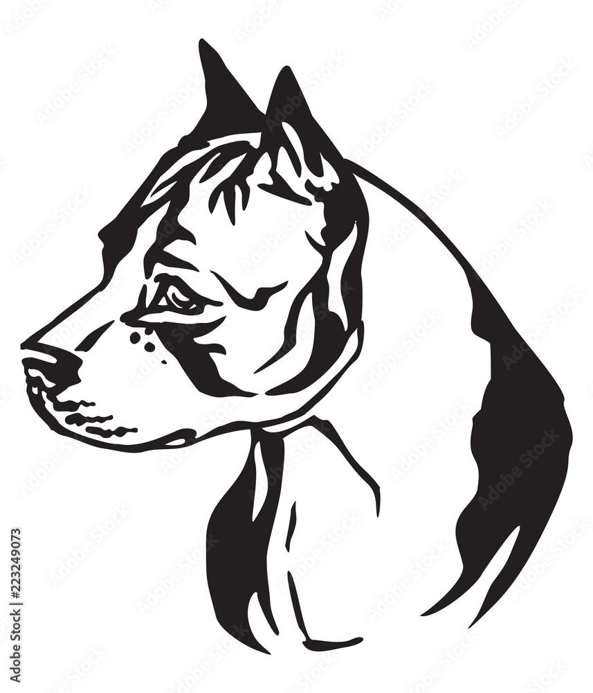 Fototapeta Decorative portrait of Dog American Staffordshire Terrier 2 vector illustration