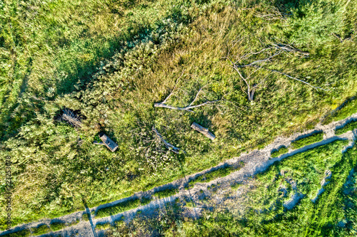 Staande foto Asia land Fallen trees near a dirt road in Kursk Region of Russia