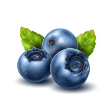 Vector Realistic Blueberry Wit...