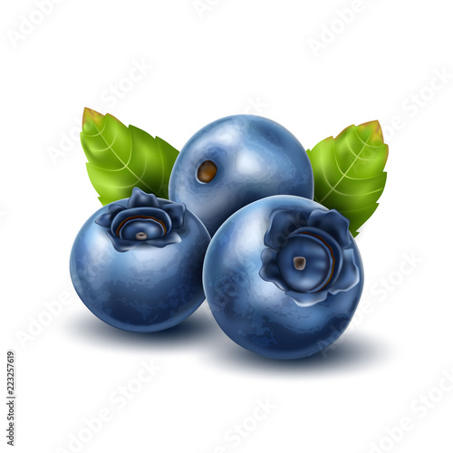 Fényképezés Vector realistic blueberry with 3d leaves set